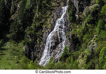 pequeño, cascada, en, verde, naturaleza