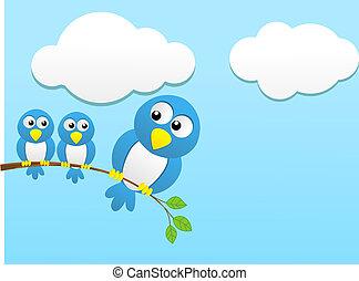 pequeño, encima, pájaro, peso