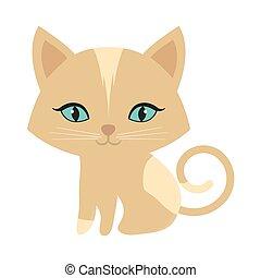 pequeño, gatito, sentado, ojos azules