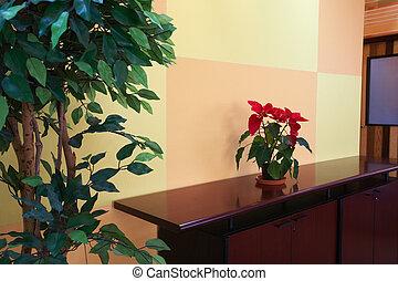 pequeño, planta, vestíbulo, oficina