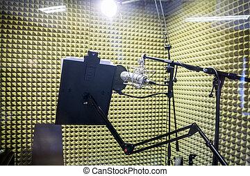 pequeño, profesional, estudio de grabación