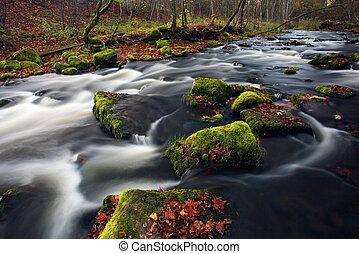 pequeño, río, cascada