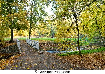 pequeño, río, en, el, park., otoño, mood.