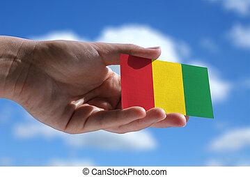 pequeño, reggae, bandera, música