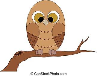 pequeno, branch., coruja, sentando