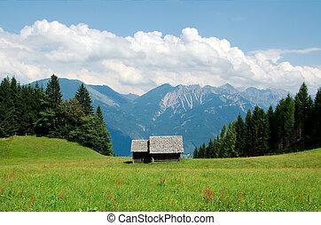 pequeno, celeiro, em, a, alps austrian