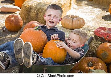 pequeno, dois, remendo, meninos, carrinho de mão, tocando,...