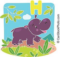 pequeno, engraçado, hippo., alfabeto, h