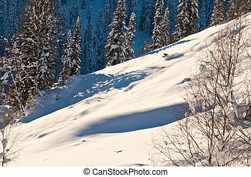 pequeno, floresta, figura, inverno