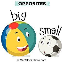 pequeno, grande, palavras, oposta