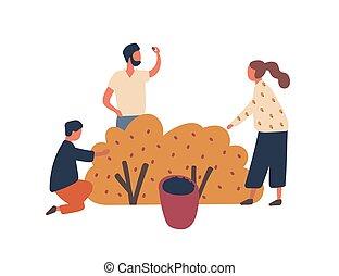 pequeno, jardinagem, agricultores, colecionar, illustration., apartamento, vetorial, concept., characters., junto., bagas, família, pai, horticultura, colher, caricatura, filho, par, criança, agricultura, mãe