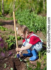 pequeno, jardineiro