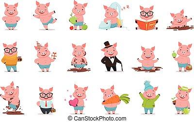 pequeno, jogo, situações, diferente, porcos, vetorial, posar, caráteres, ilustrações, caricatura