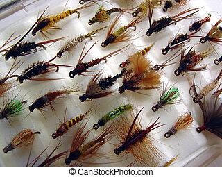 pequeno, moscas