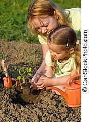 pequeno, mulher, jardim, menina