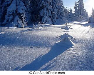 pequeno, nevado, homem