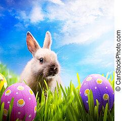 pequeno, ovos, verde, capim, Páscoa, coelhinho