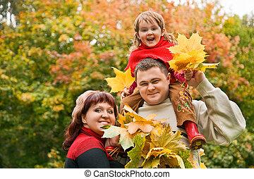 pequeno, par, casado, parque, outono, cobrar, folheia,...