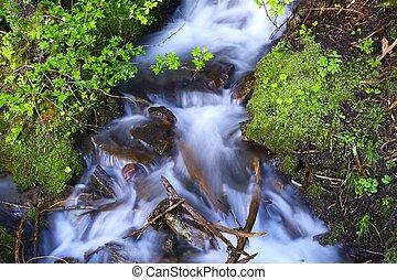 pequeno, riacho, fluxo