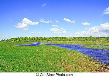 pequeno, rio, ligado, campo