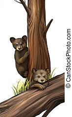 pequeno, teddy-urso, ursos, playing., caído, árvore.