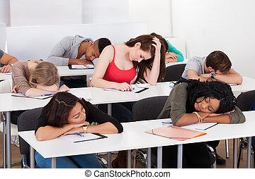 percé, bureau, camarades classe, étudiant, dormir
