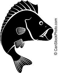 perch fish - monochrome illustration