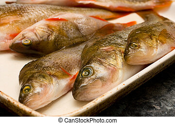 perch ready to cook.