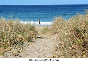 percorso, a, il, spiaggia