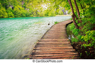 percorso legno, in, parco nazionale, in, plitvice