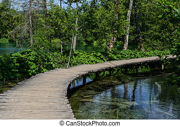 percorso legno, in, plitvice, parco nazionale, croazia