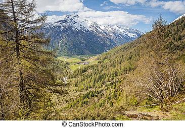 percorso montagna, tempo, valle, primavera