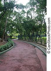 percorso, parco
