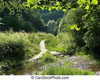 percorso, valle