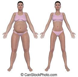 perda, peso, após, vista dianteira, antes de