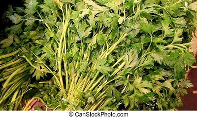 perejil, atado, verde, exhibición, celeries, ramo