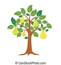 perenboom, vrijstaand, vector, achtergrond, witte