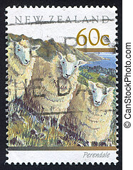 perendale sheep - NEW ZEALAND - CIRCA 1991: stamp printed by...