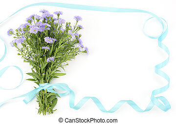 Perennial aster bouquet with blue ribbon isolated on white background