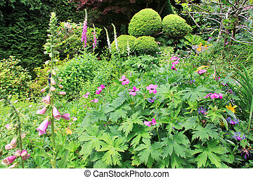 Perennial garden flower bed.