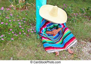 perezoso, mexicano, jardín, sombrero, siesta, poncho, sombrero, hombre