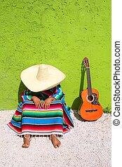 perezoso, mexicano, sentado, sombrero, siesta, hombre, típico