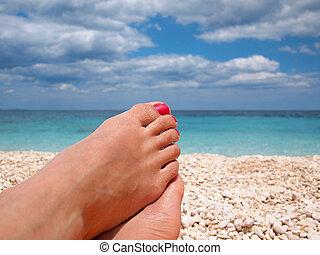 perezoso, pies, en la playa