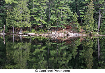 A perfect reflection of the tree line in Algonquin Provincial Park, Ontario, Canada.
