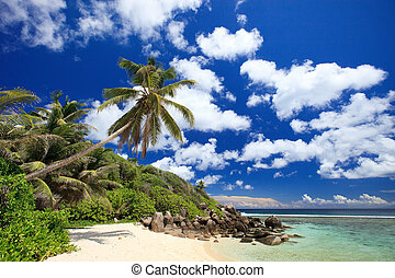 Perfect beach in Seychelles with white sand, turquoise ...
