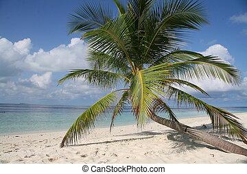 Perfect beach, Maldives