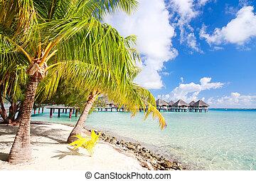 Perfect beach on Bora Bora - Beautiful beach on Bora Bora...