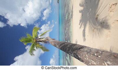 perfect beach vertical1