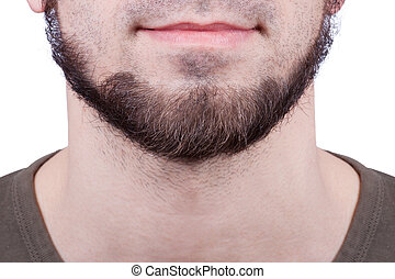 Perfect beard. Close-up of young bearded man