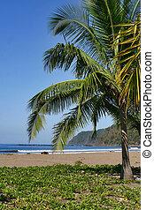 Jaco Beach, Costa Rica.